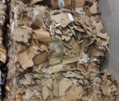 Cardboard / OCC